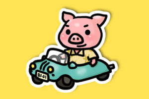 沖縄豚あぐー、かりゆしウェアを着て車でドライブ