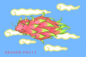 ドラゴンフルーツ龍
