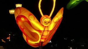 ホイアンのランタンの…蝶?